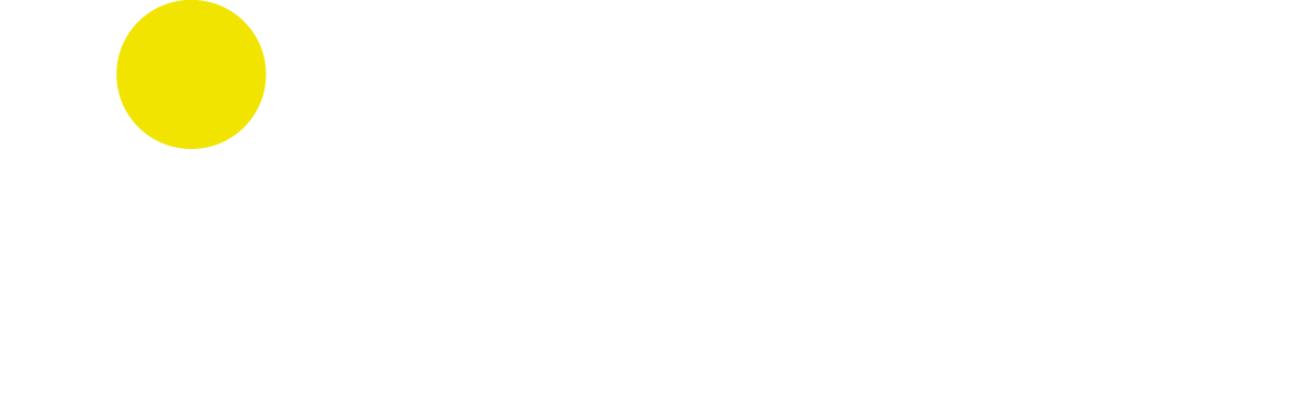 Hinterauer Consulting Logo neg